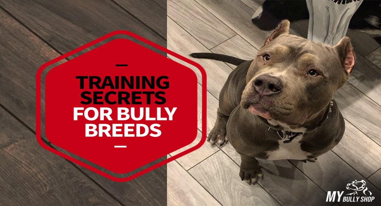 training-secrets |