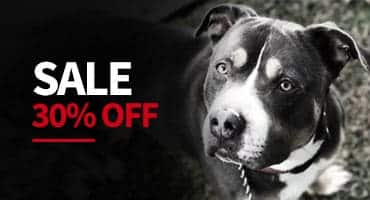online shop sale |
