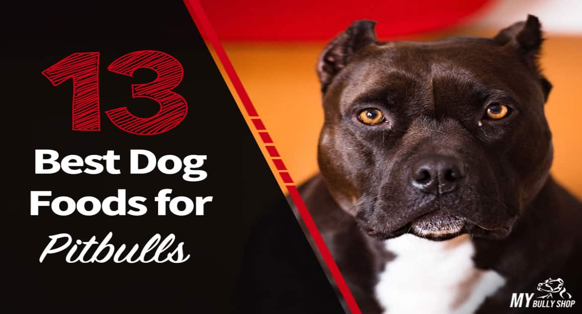 best pitbulls dog food |