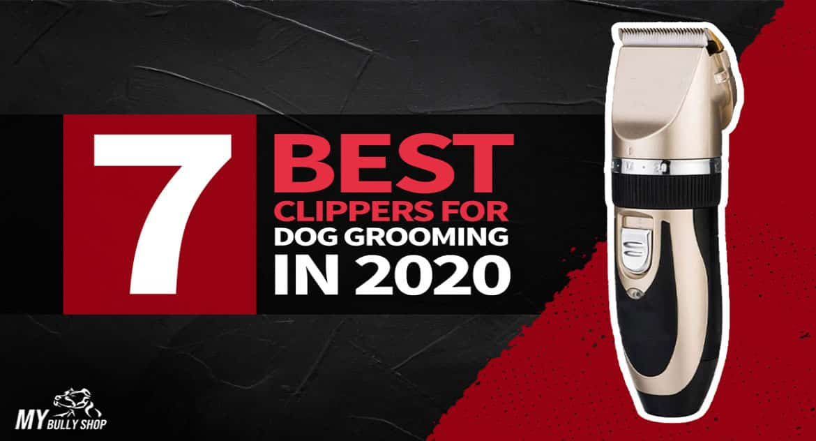 best dog groomers clippers |