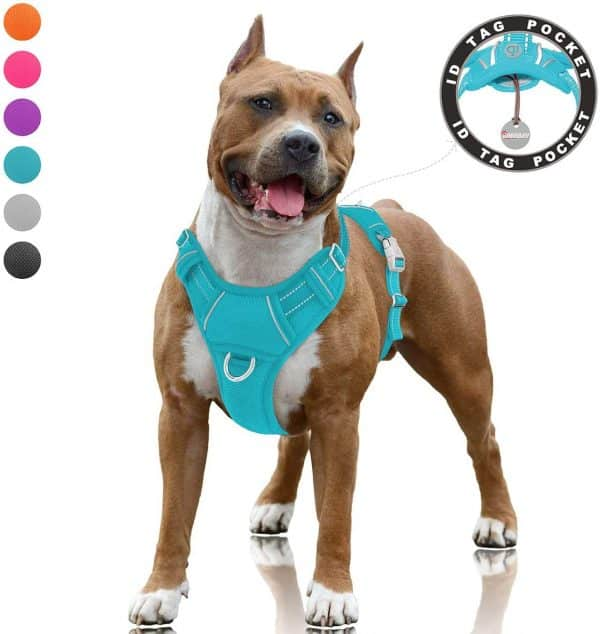 BARKBAY Dog Harness for Walking |