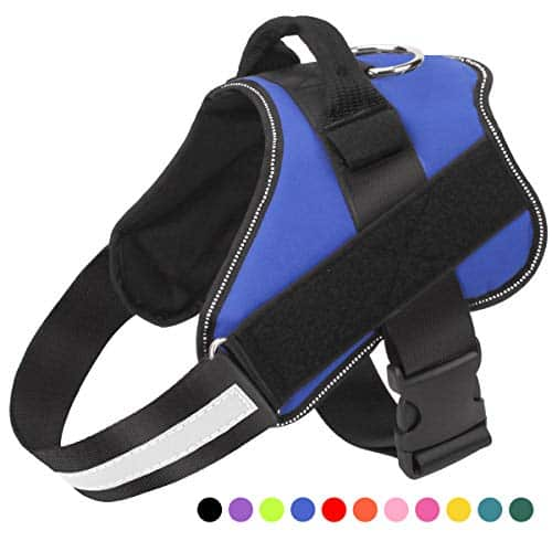 Bolux Adjustable Dog Harness |