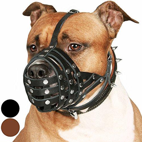 CollarDirect Pitbull Dog Muzzle Leather  