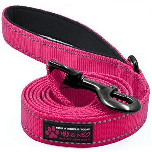 Max and Neo Reflective Nylon Dog Leash |