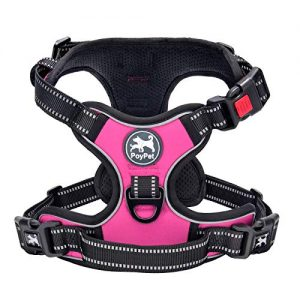 PoyPet No Pull Dog Harness |