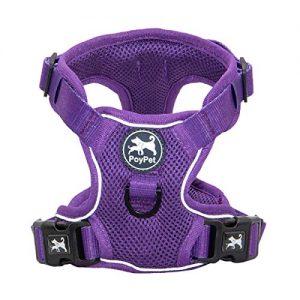 PoyPet Reflective-Soft Breathableesh Dog Harness |