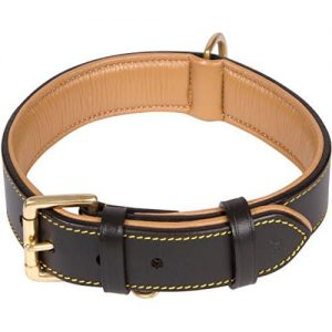 Soft Touch Collars Luxury Real Leather Padded Dog Collar |