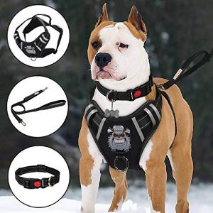 TIANYAO Dog -Harness No Pull Dog Vest |