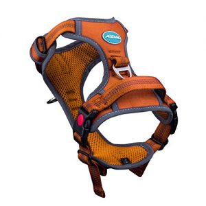 ThinkPet No Pull Breathable Sport Harness |