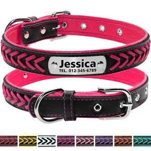 Vcalabashor Custom Leather Personalized Engraved Dog Collar |