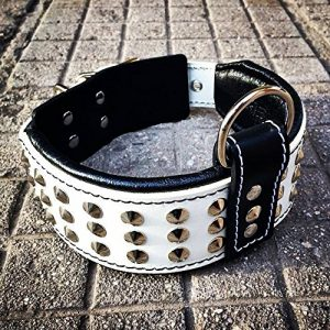Bestia genuine leather dog collar |
