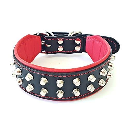 Bestia Rocky Studded Dog Collar |