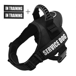 Fairwin Service Vest Dog Harness |