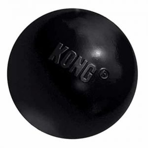 KONG Extreme Ball Dog Toy |
