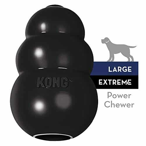 KONG Extreme Dog Toy Large Black |