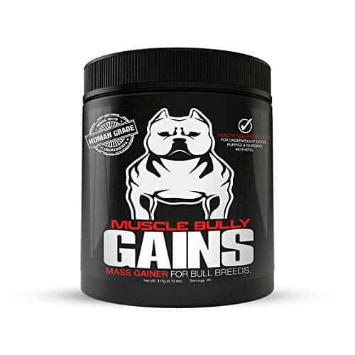 Muscle Bully Mass Weight Gainer |