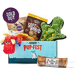 Goody Box Dog Toys & Treats for Large Dogs