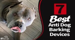 anti dog.barking device