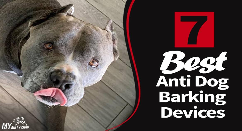bark |