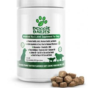 Doggie-Dailies-Glucosamine-for-Dogs-225-Soft-Chews-Advanced-Hip-and-Joint-Supplement-for-Dogs-with-Glucosamine-Chondroitin-MSM-Hyaluronic-Acid-and-CoQ10-Premium-Joint-Relief-for-Dogs-0 |