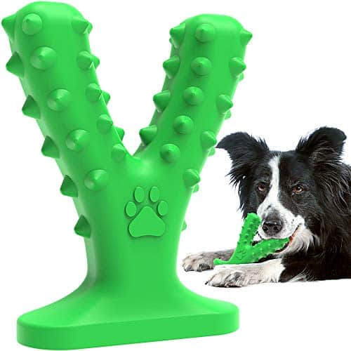 Dog-Chew-Toys-for-Aggressive-Chewers-Medium-Large-BreedTough-Dog-Toys-for-Medium-Large-DogsNearly-Indestructible-Dog-Dental-ToysDog-Chew-Toys-Dog-Toothbrush-Doggy-Brushing-Stick-0 |