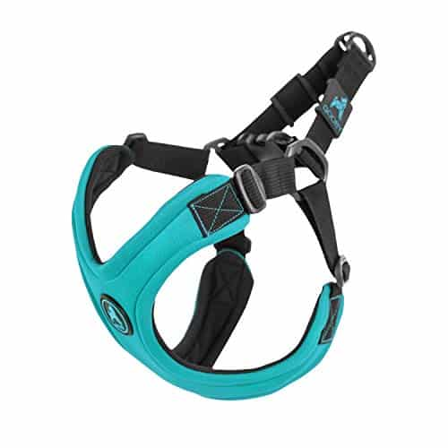 Gooby-Escape-Free-Sport-Harness-Small-Dog-Step-in-Neoprene-Harness-for-Dogs-That-Like-to-Escape-Their-Harness-0 |