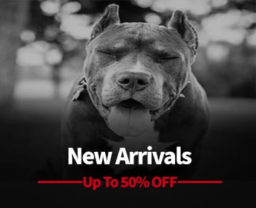 new arrivals products