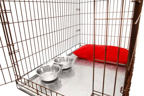 dogscratetraining   dogs crate training